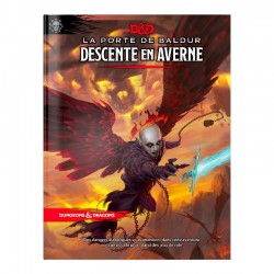 Dungeons & Dragons 5 - Baldur's Gate - Descente en Averne