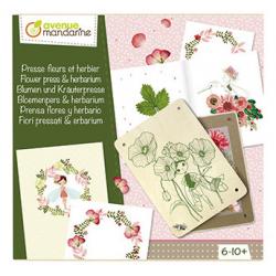 Boite créative -Presse fleurs et herbier