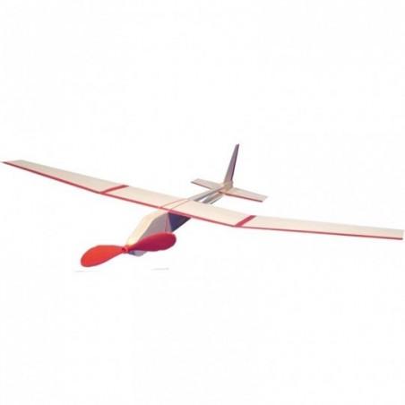 Avion à moteur à élastique